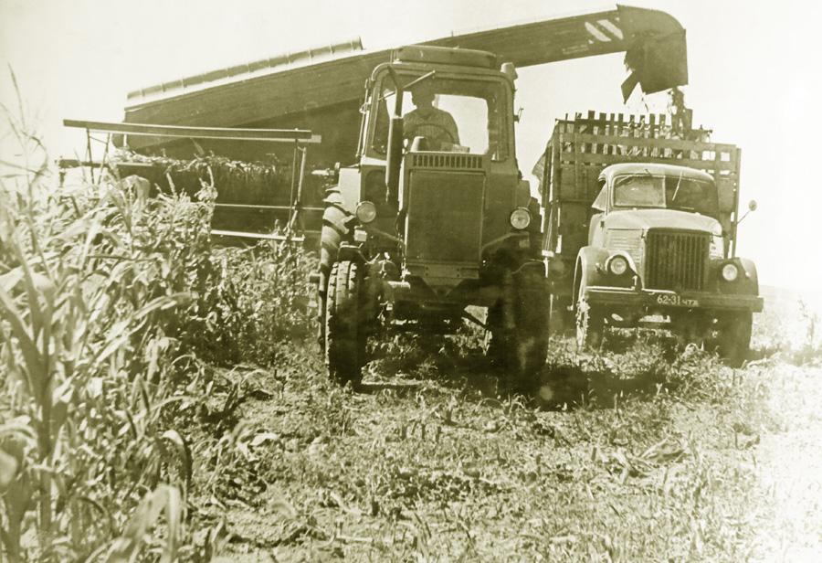 Уборка кукурузы в совхозе Красная Ималка.jpg
