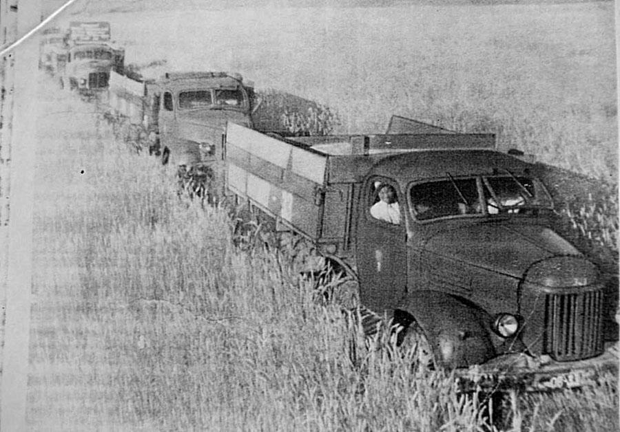 Вывозка зерна государству.jpg