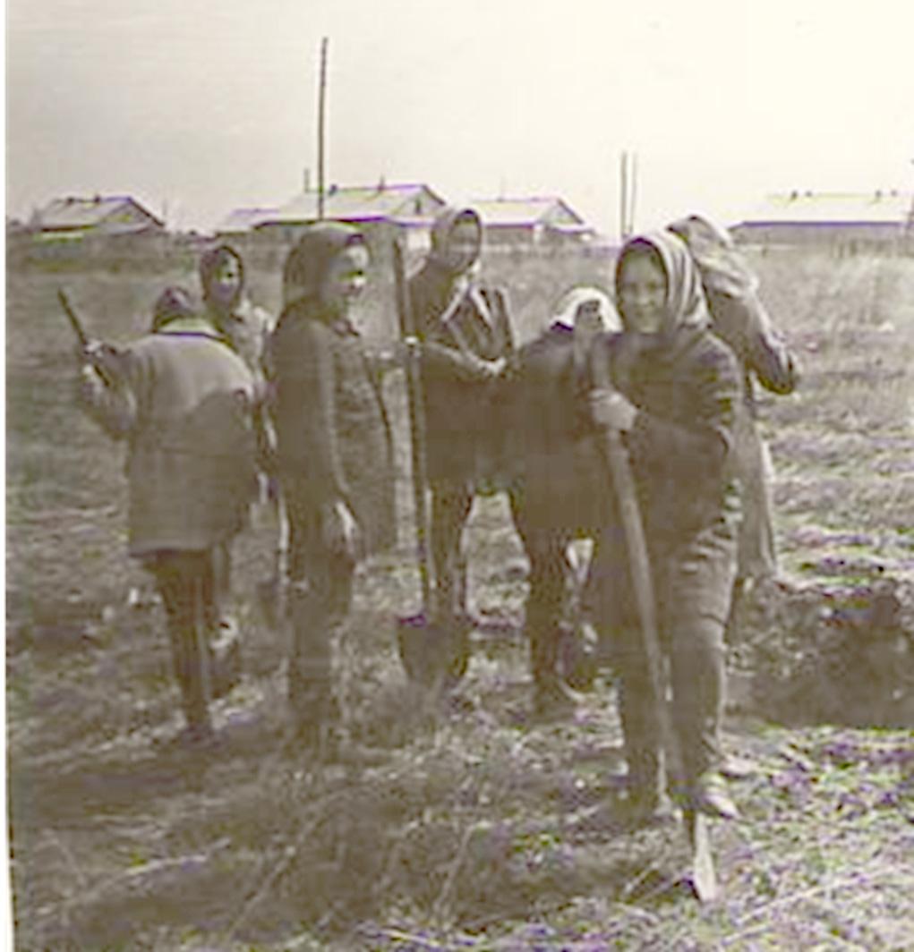 Б-19.jpg
