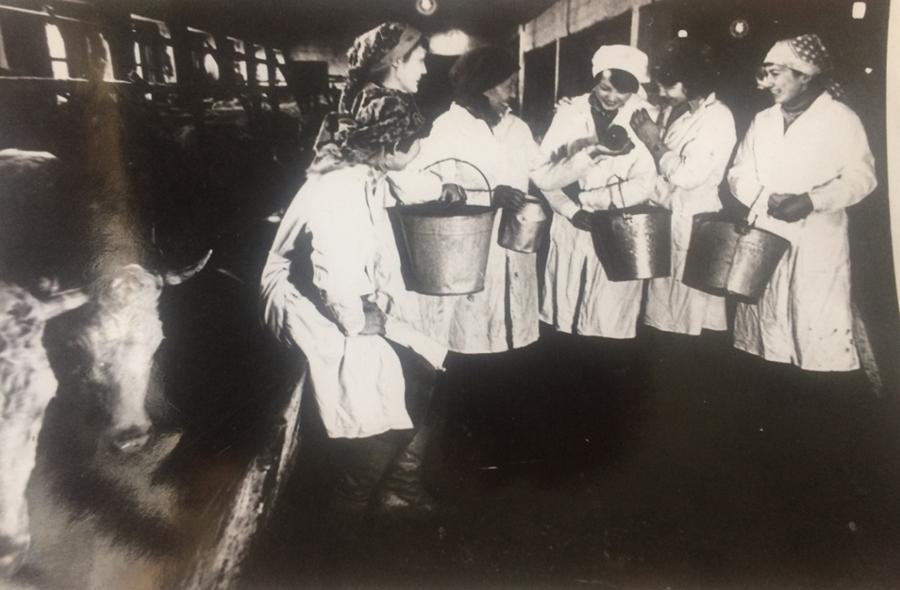 К-91 С наставницей Ж. Эрдынеевой перед дойкой.jpg