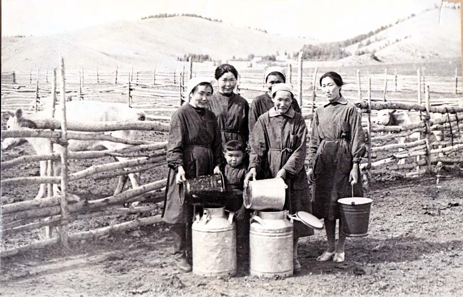 Молочно-товарная ферма колхоза Эрдэм.jpg