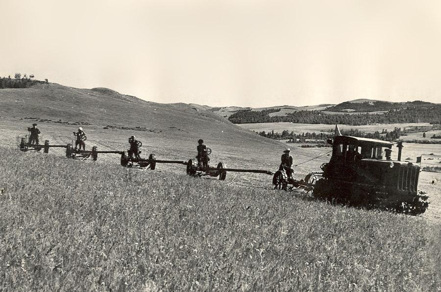 Трактор на кормах.jpg