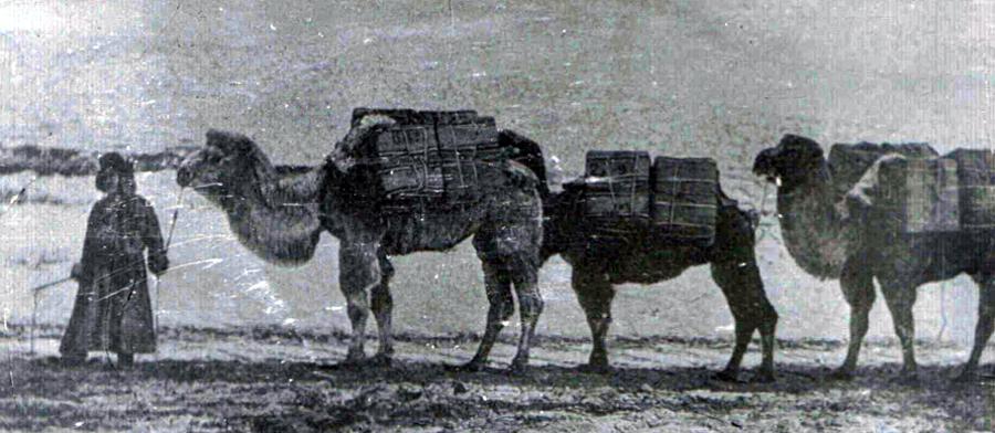 1. Караван. Начало 20 века.jpg