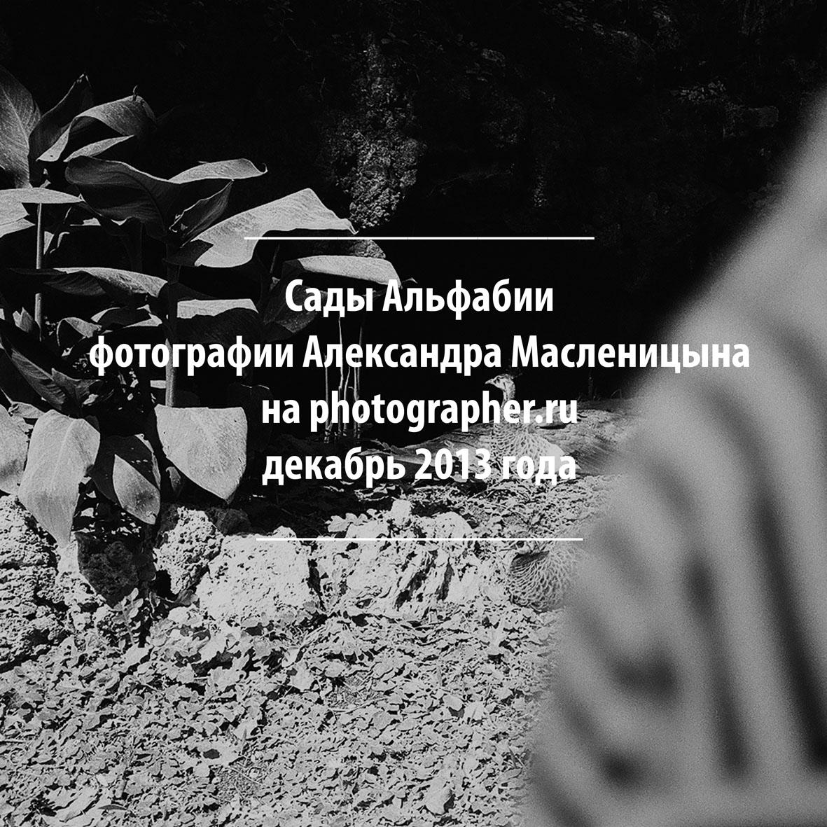 garden_3_fb