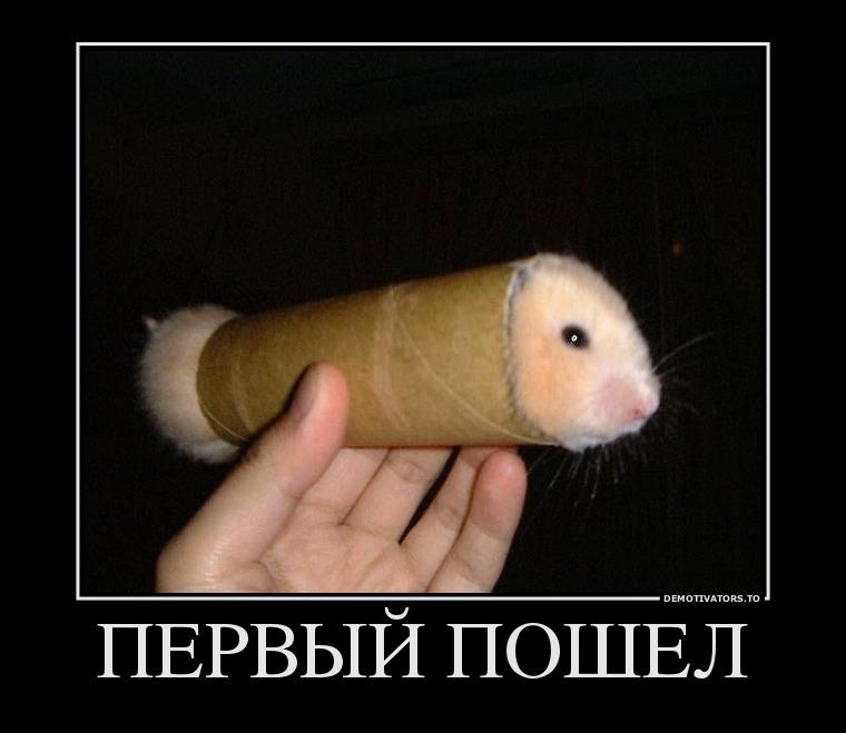 463017_pervyij-poshel_demotivators_ru