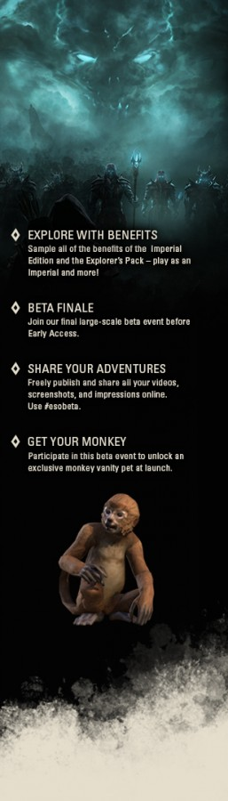 The Elder Scrolls Online - BETA