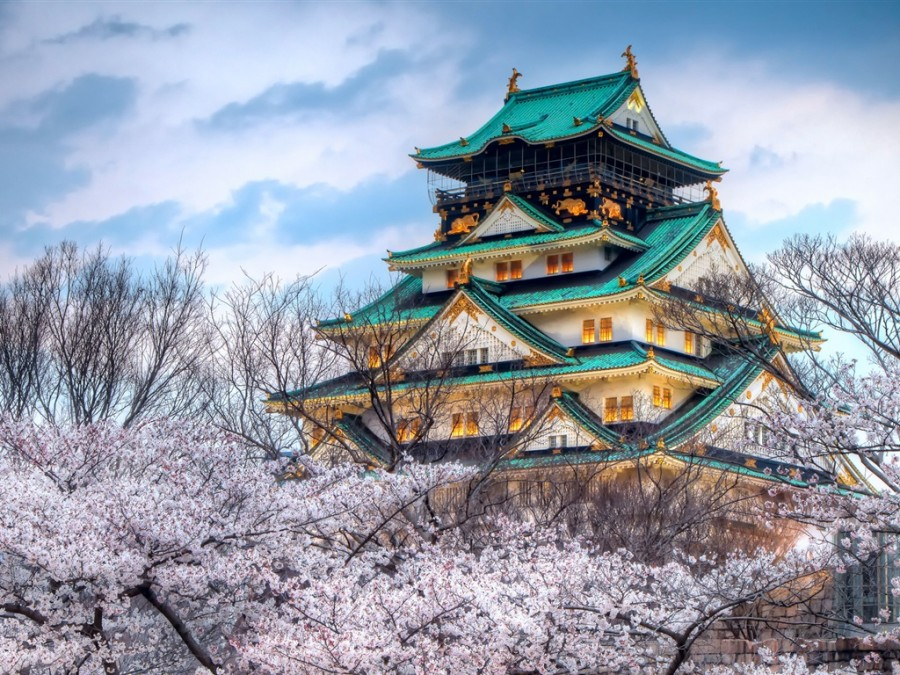 The-temple-of-the-cherry-blossom-season-in-Japan_1024x768.jpg