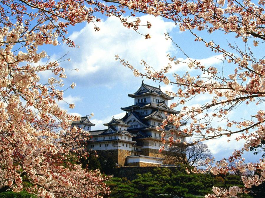 World_Japan_Himeji-jo_Castle__Himeji__Kinki__Japan_007875_.jpg