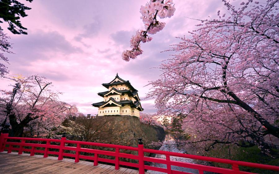 hirosaki_castle_japan-wide.jpg