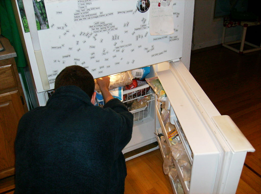 My cousin crouches, peering into the crowded freezer compartment at the bottom of the refrigerator. The upper door is closed and covered with word magnets.