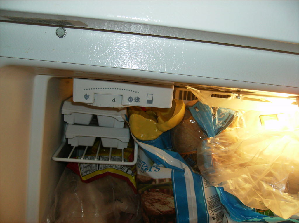 A close-up of the packed freezer. It does not appear to have any free space, but the mold has been jammed in a crevice.