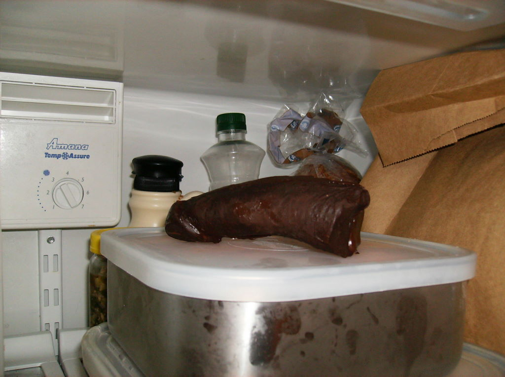 A close-up shot of the chocolate penis inside the refrigerator on top of one of the metal boxes. Some of the warm chocolate still glistens.
