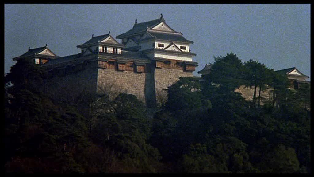 Château médiéval japonais