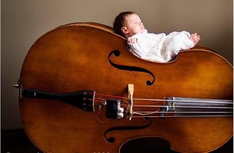 Прикольные картинки скрипки