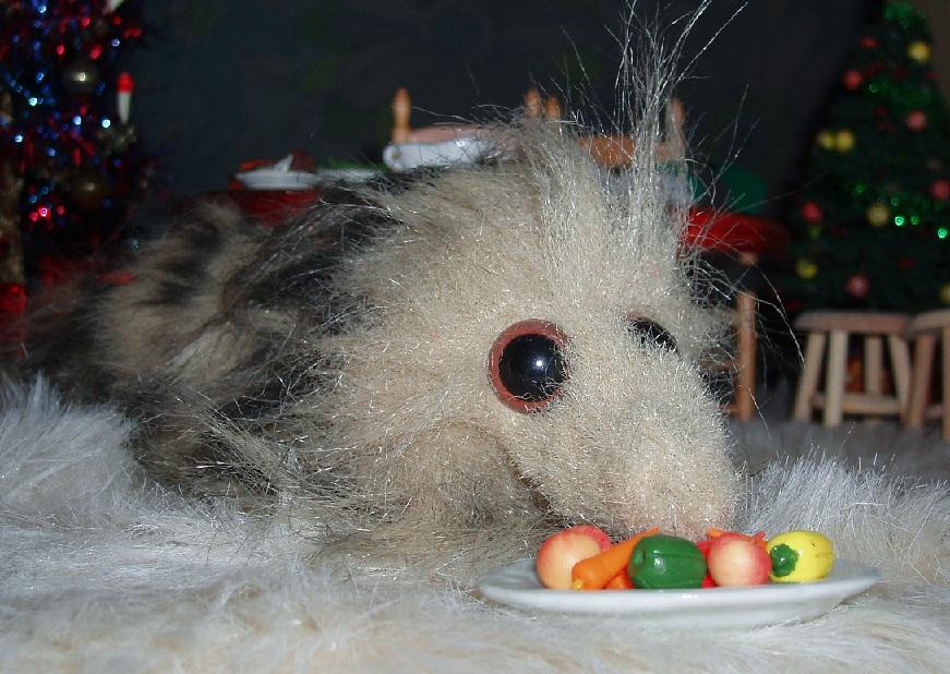 Nosy's Christmas Dinner