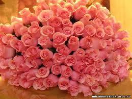 Розы к Днюхе