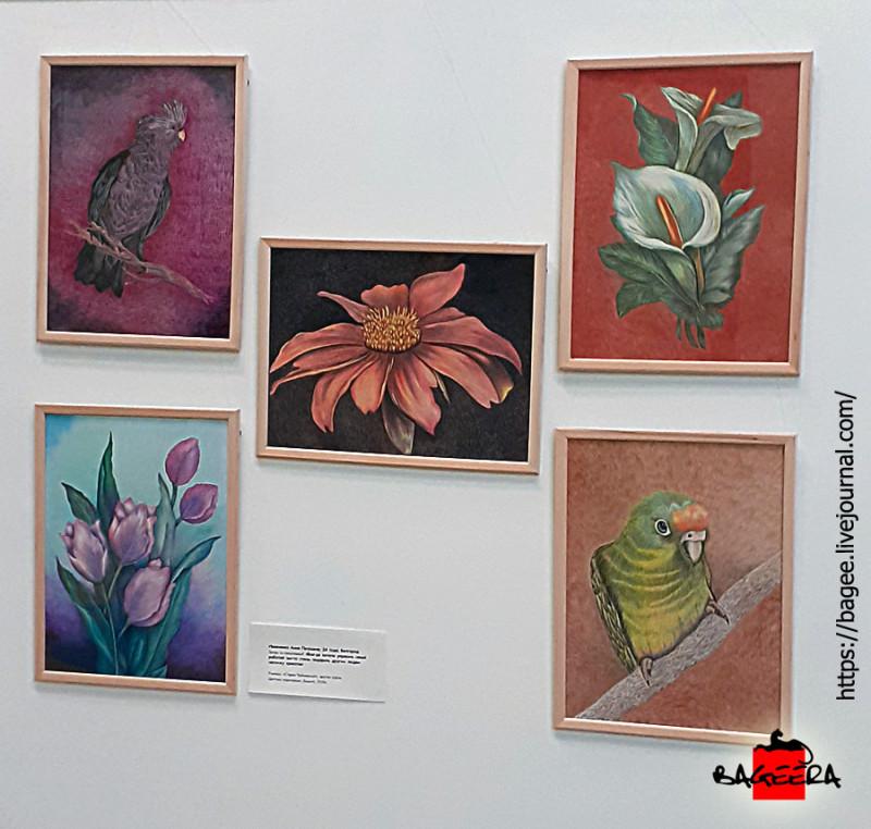 Мои 5 работ А3 на выставке (цветной карандаш)