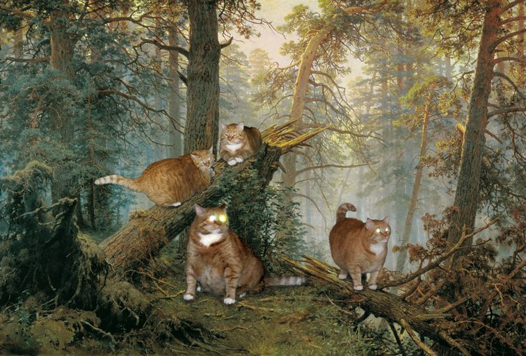 Коты в лесу