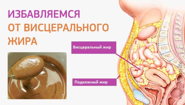 Висцеральный жир 2