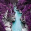 purple_river