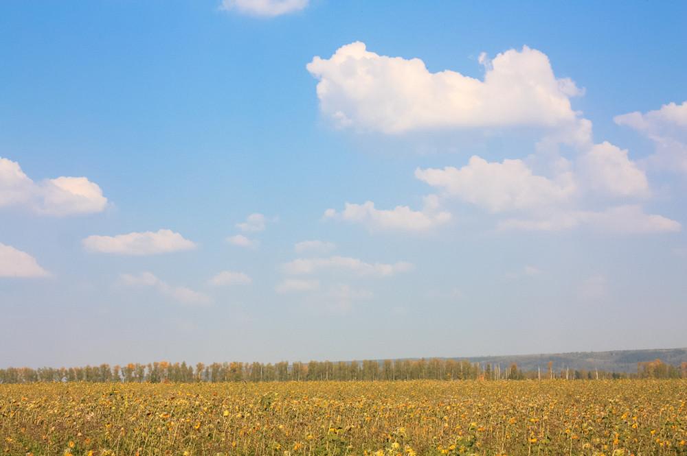 пензенская область сентябрь (15 of 19)