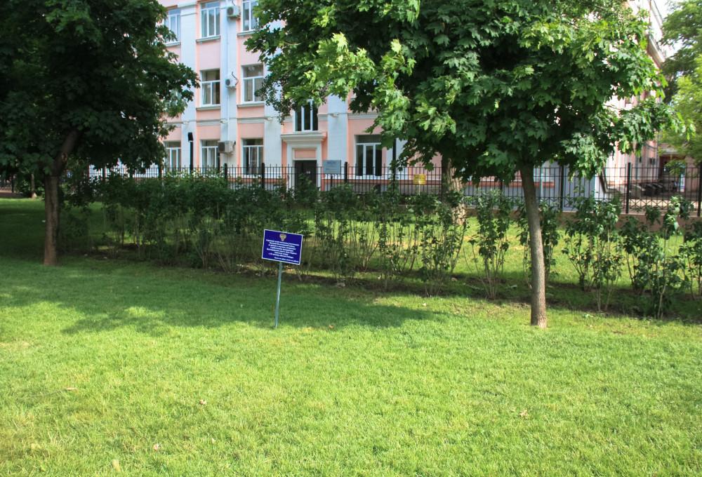 Детские клиники в выборгском районе