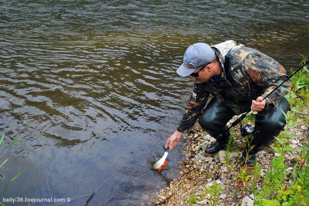 рыбалка суроватиха