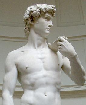 Michelangelo-david 2