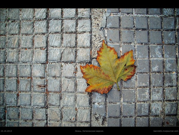 Осень по-каталонски