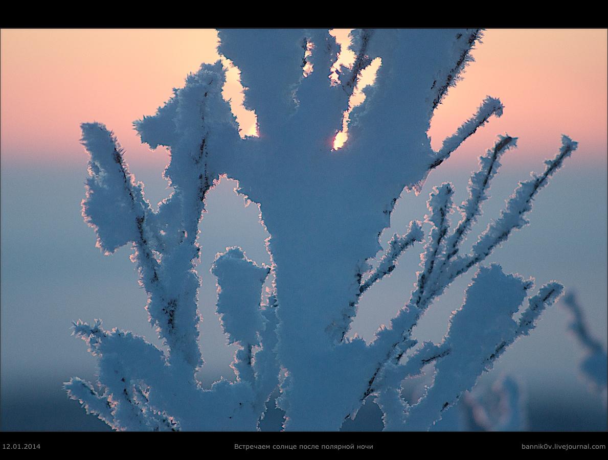 Встречаем солнце после полярной ночи в 2014-м (красота)