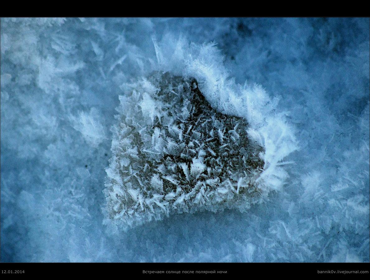 Встречаем солнце после полярной ночи в 2014-м (*банальность о замороженном сердце*) ;D