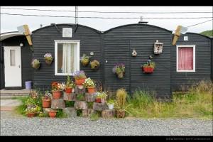 Цветы у мотеля в Титовке