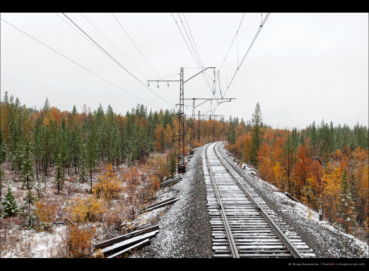Оленегорск—Мончегорск: первый снег (всё больше)