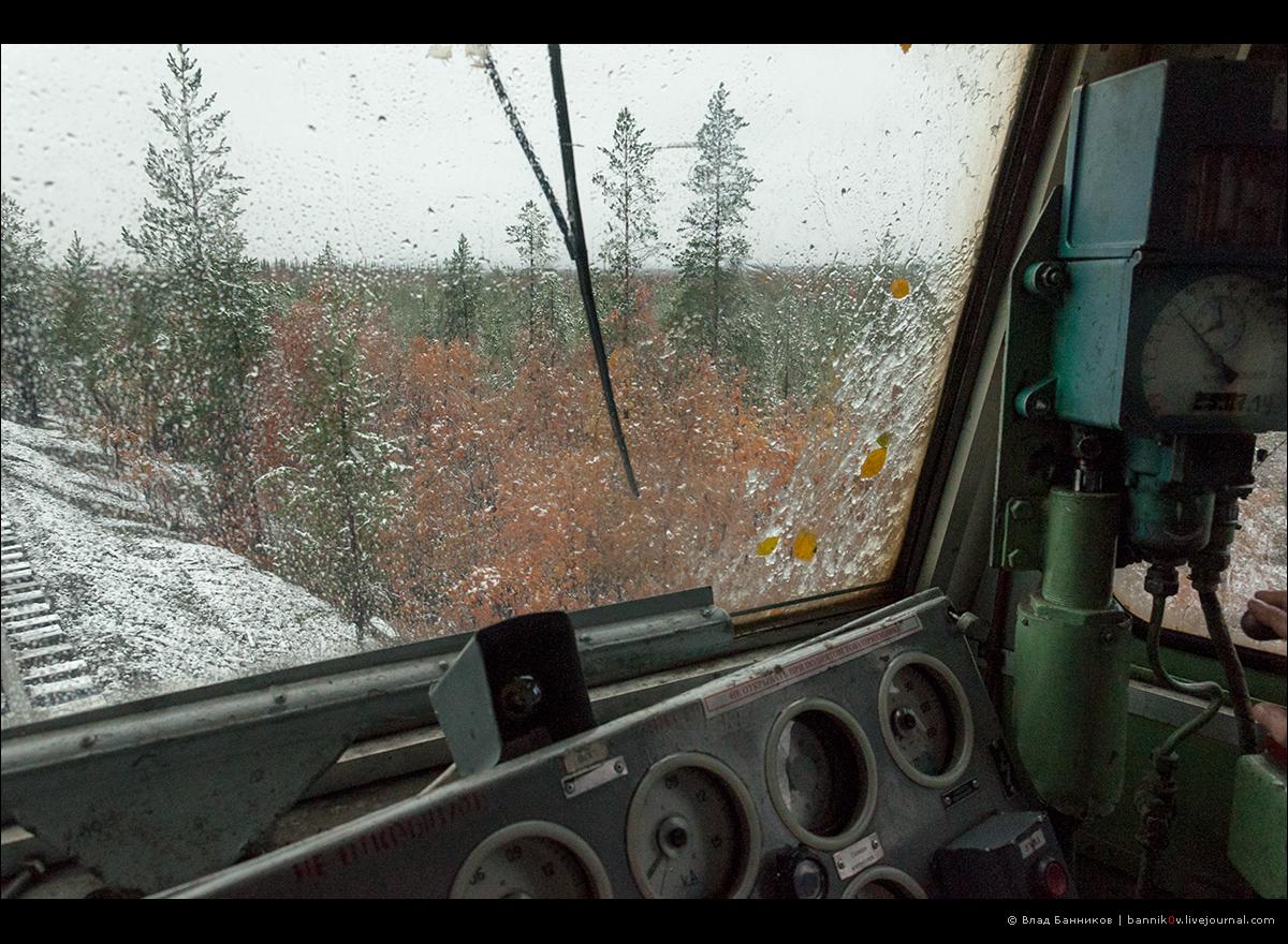 Деревья под тяжестью мокрого снега свисают в габарит