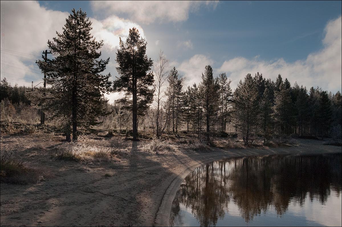 Озеро и лес