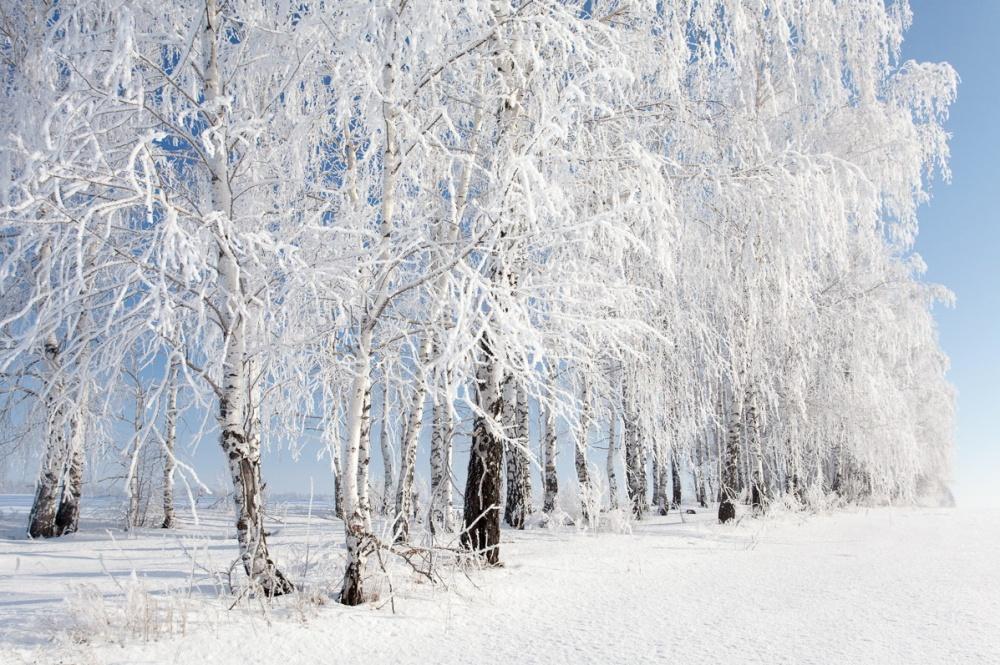 zima-krasivo-kartinki