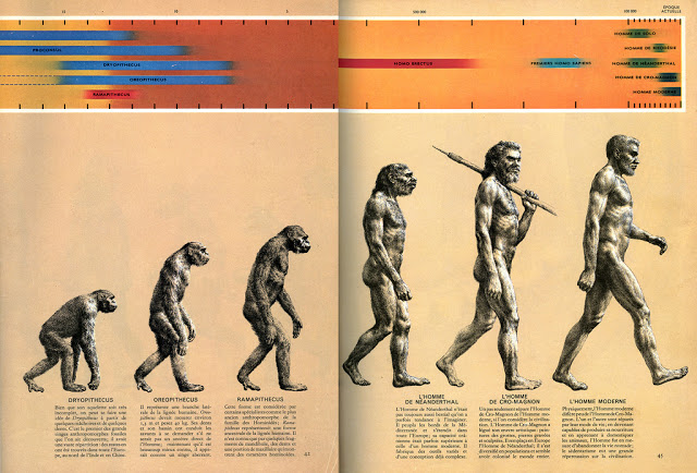 the early man according to the theories of charles darwin