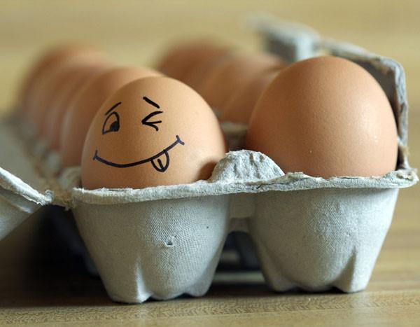 eggsve0