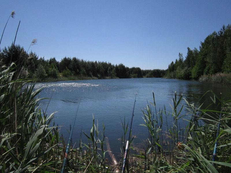 места рыбалки в воскресенске