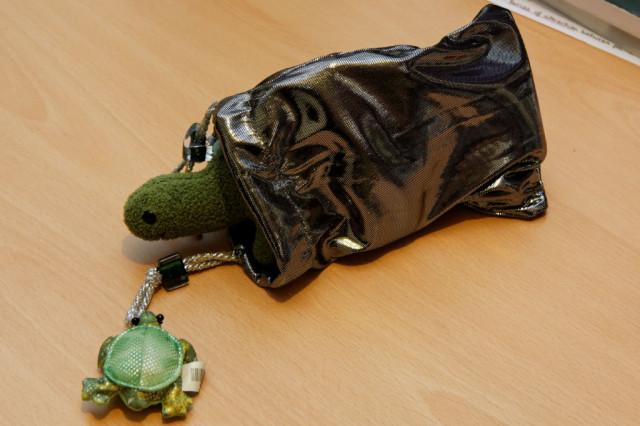 dino tests the shiny bag