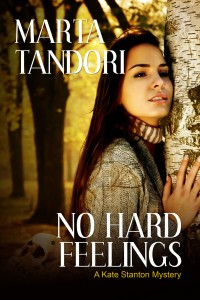 NoHardFeelings_ebook_cover