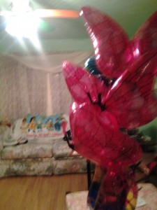 BalloonButterflyProfile