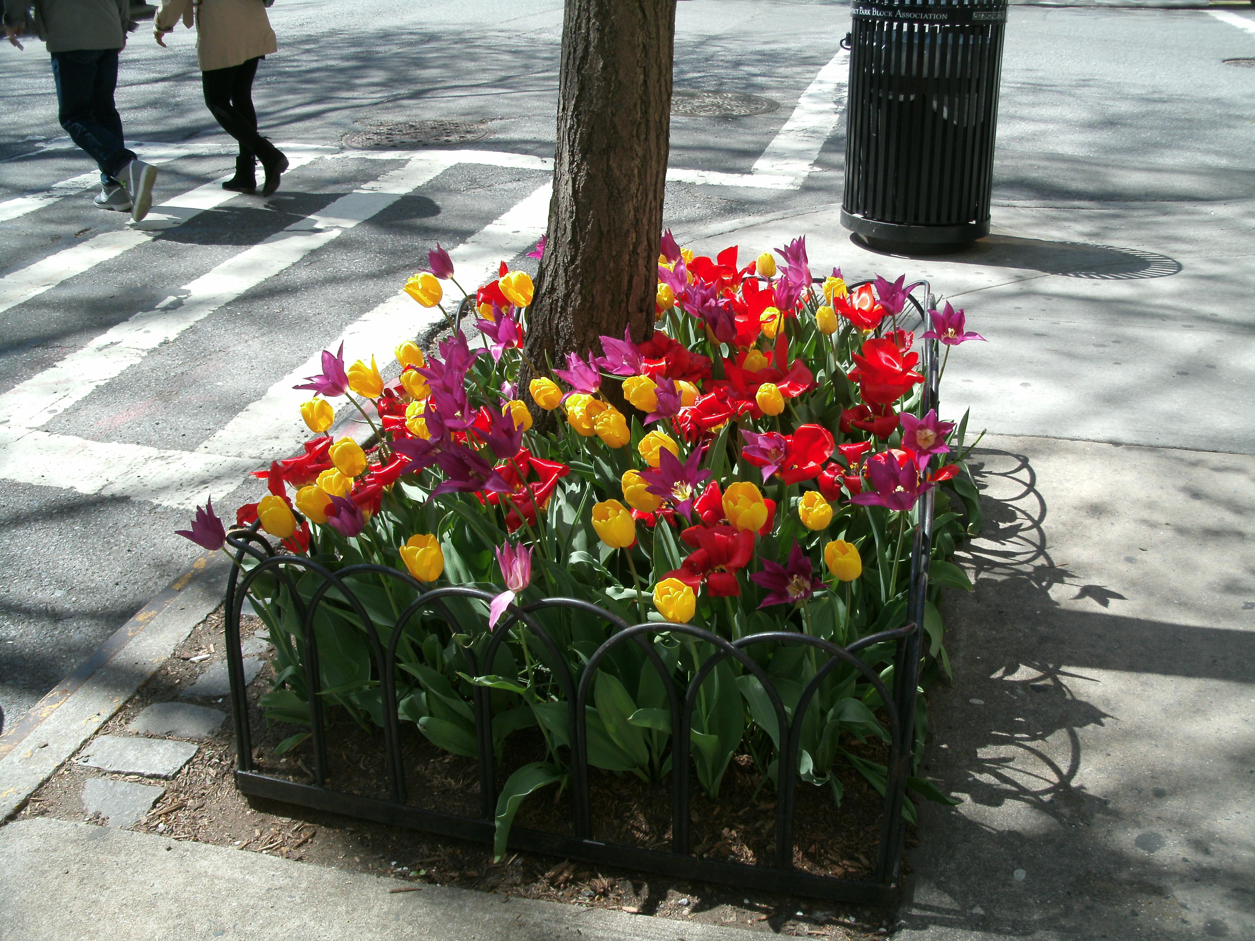 spring 13 009