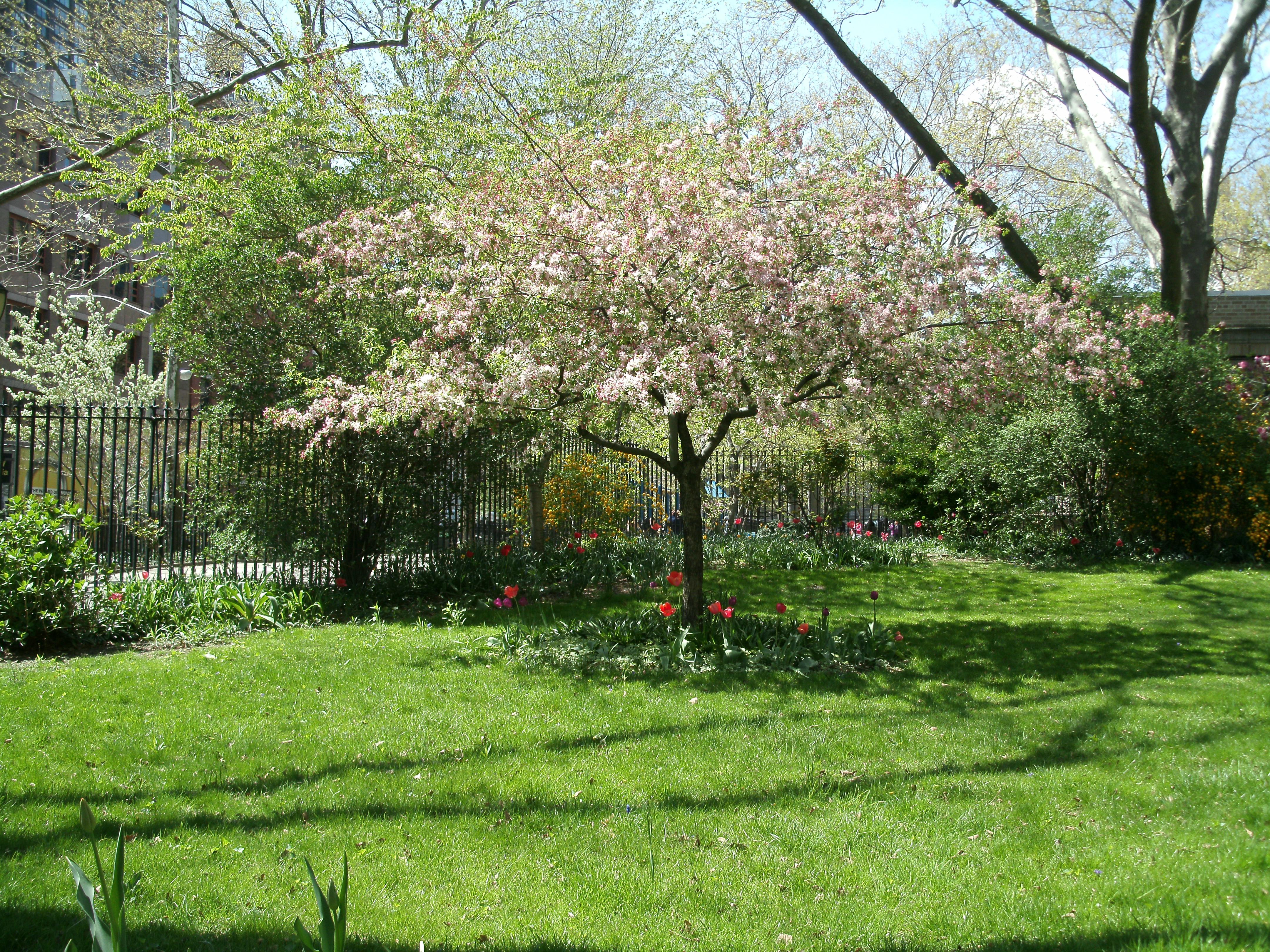 spring 13 001