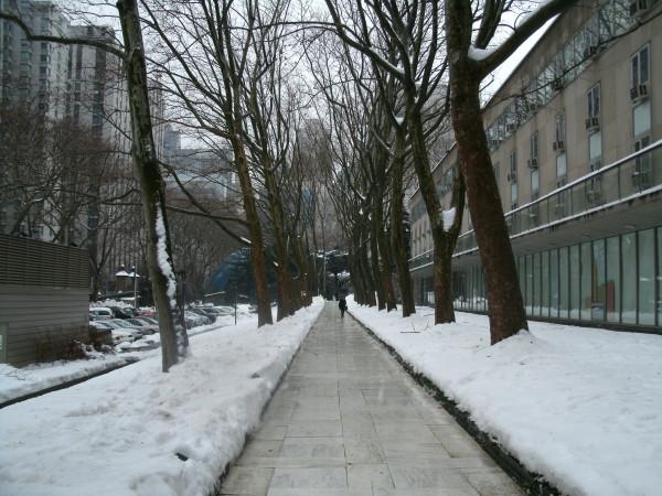 Feb 2011 002