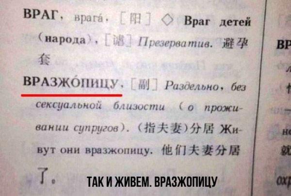 словарь вразжопицу