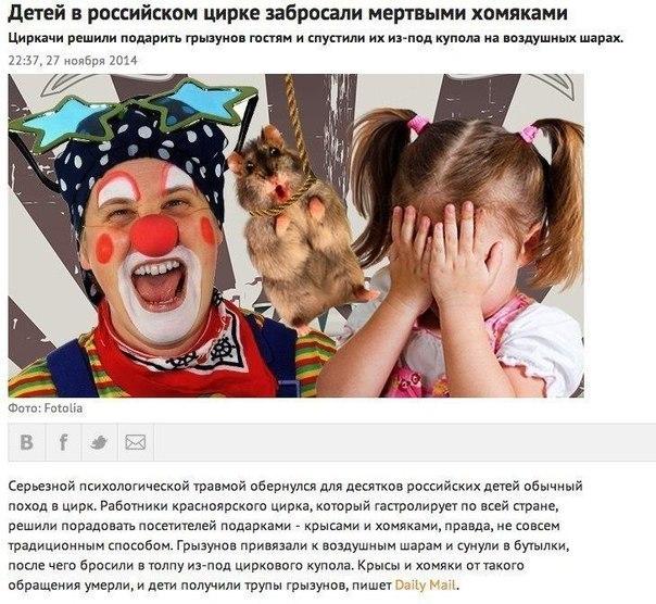 мертвые хомячки в цирке для детей