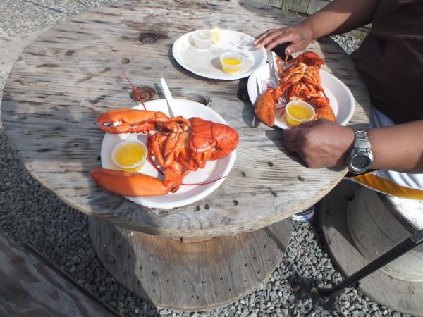 20130609vineyard768 Lobster