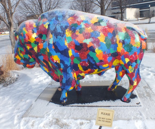 Bison at Fargo-Moorhead Visitors Center