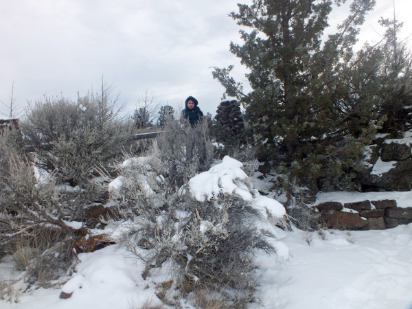 Legend, Smith Rock State Park, OR 12/31/12